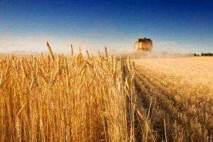 agricoltura_priorita_martina